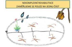 nekomplexní rehabilitace